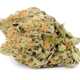 Animal Cookies Weed ZA