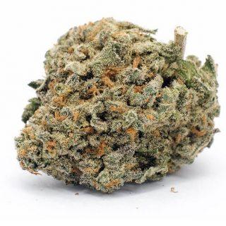 Blueberry Pie Marijuana ZA