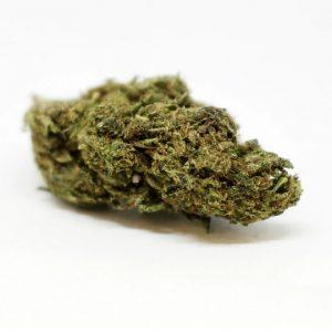 Buy ACDC Marijuana SA