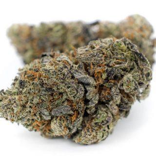 Buy Blackberry Kush Weed ZA