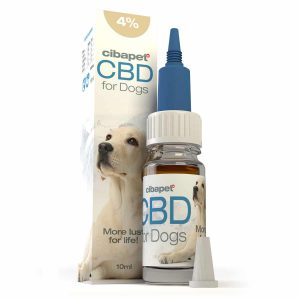 Buy Cibapet CBD oil 4% for dogs ZA