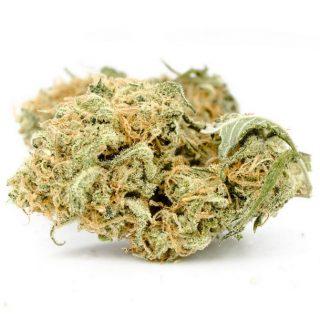 Buy Gelato Weed South Africa