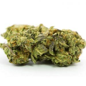 Buy Master Kush Weed ZA