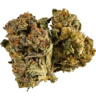 Cannatonic Weed Strain ZA