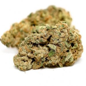 Charlotte's Web Marijuana ZA