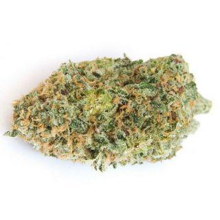 Chocolope Weed Strain ZA