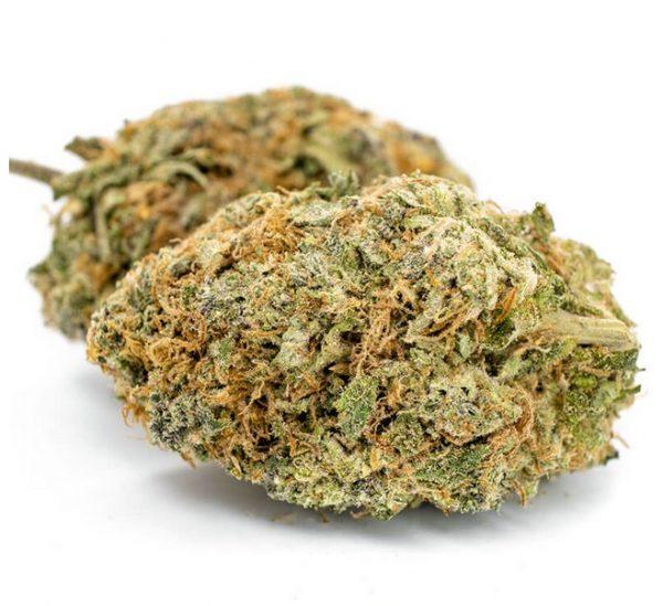 Cotton Candy Marijuana ZA