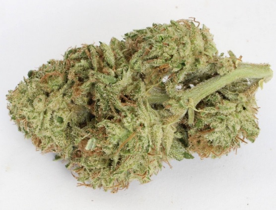 Crimea Blue Weed ZA
