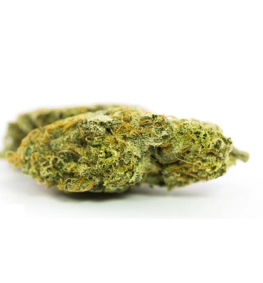Dr. Grinspoon Marijuana SA
