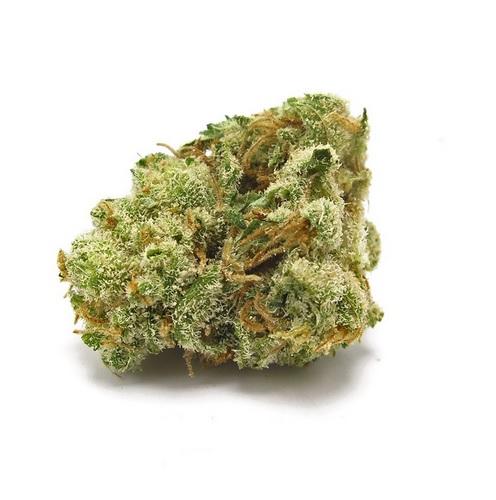 G-13 Haze Marijuana SA