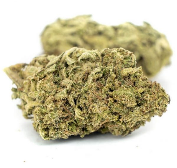 Girl Scout Cookies Weed for sale Gauteng