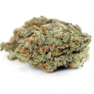 Gorilla Zkittlez Marijuana ZA