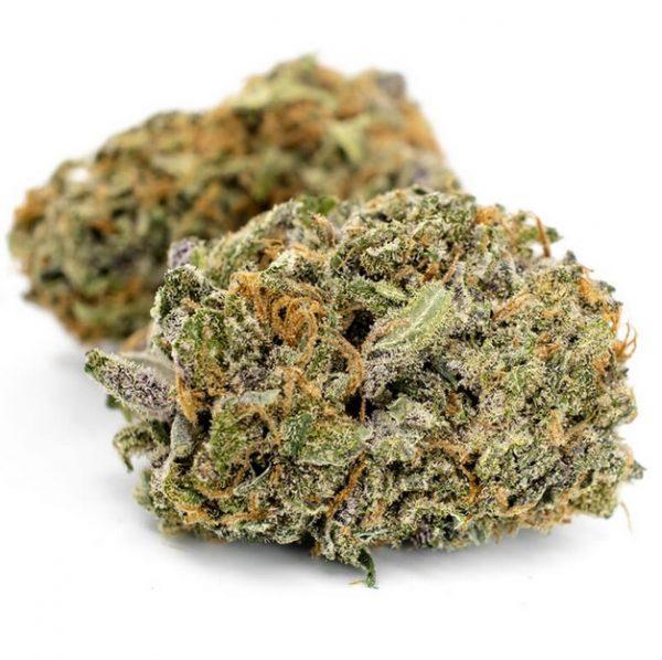 Grand Daddy Purple Weed ZA