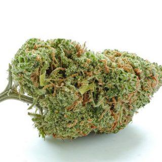 Green Crack Weed SA