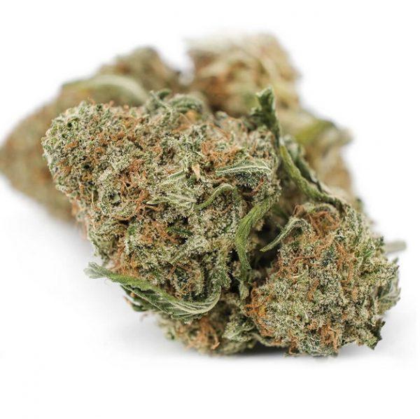 Juicy Jack Weed ZA