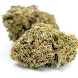 Strawberry Cough Marijuana ZA