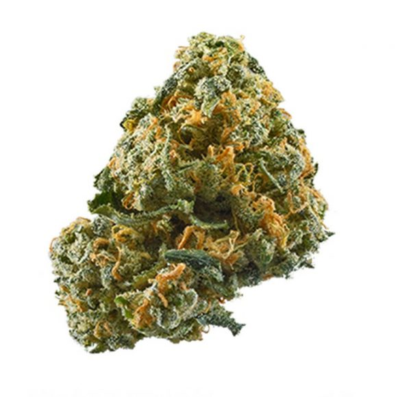 Buy Cheese Weed Strain South Africa